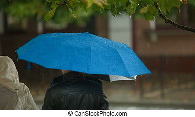 autobus, attente, arrêt, parapluies, gens