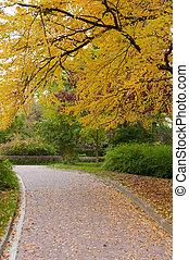 automne, allée, parc, route, pavé