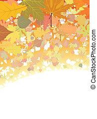 automne, arrière-plan., feuilles