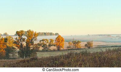 automne, beau, panoramique, paysage, rural