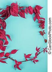 automne, bleu, feuilles rouge, space., gratuite, lierre, fond