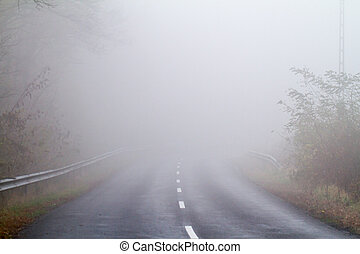 automne, brouillard, route, asphalte