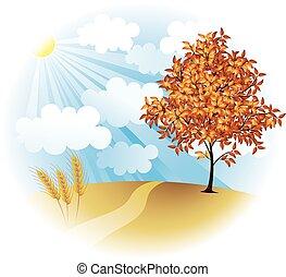 automne, champ