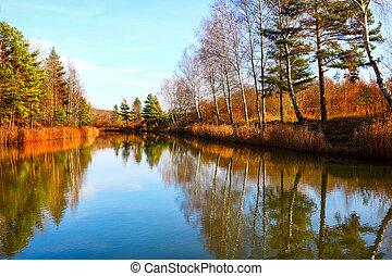automne, couleurs, clair, parc, lac