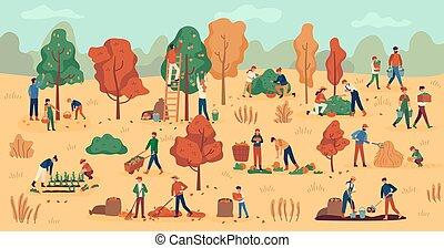 automne, fond, ramassage, légumes, travail, agricole, season., berries., plantation, fruits, agriculteurs, empilement, foin, vecteur, récolte