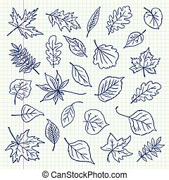 automne, freehand, feuilles, dessin, article