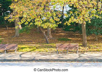 automne, garez banc
