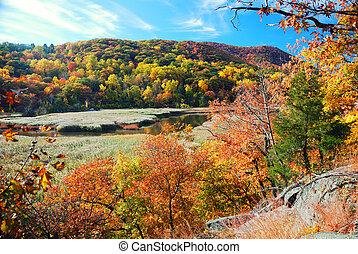 automne, lac montagne