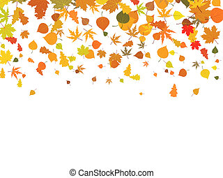 automne, leaves., fond