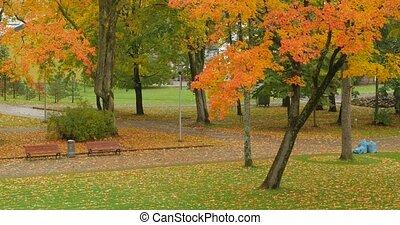 automne, marche, city., gens