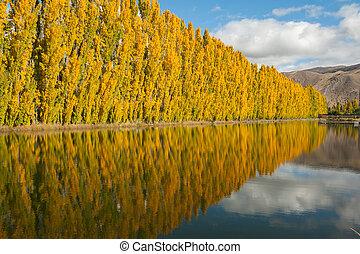 automne, nouvelle zélande