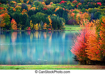 automne panoramique, paysage