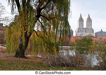 automne, parc central, coloré