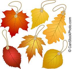 automne, pendre, vecteur, leaves., étiquettes