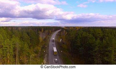automne, plusieurs, camions, forêt, conduite