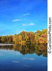 automne, refléter, lac, arbres
