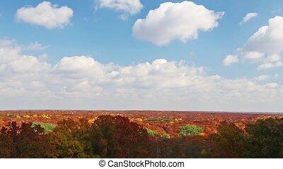 automne, timelapse, boucle, skyscape