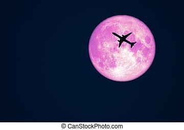 avion, ciel, silhouette, corneille, vol, lune, entiers, nuit