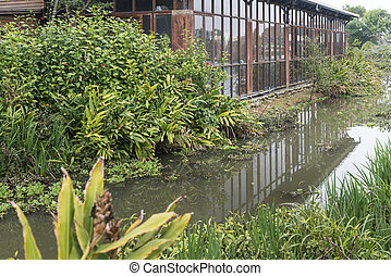 bâtiment, étang, tranquille, reflété