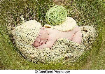 bébé, escargot