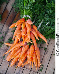 bébé, frais, carottes, tas