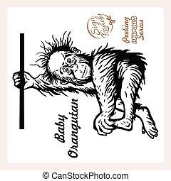 bébé, vecteur, illustration, pendre, branche, orang-outan