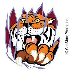 backgro, déchirure, tigre, griffe