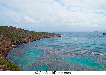 baie, île, oahu, hawaï, hanauma