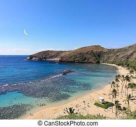 baie, hawaï, hanauma