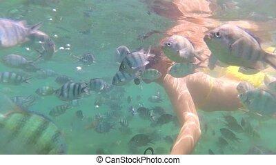 baigner, fish., masques, mer, plongée, girl, scaphandre