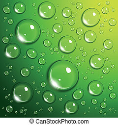 baisses eau, vert
