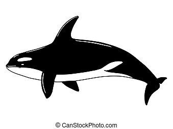 baleine, poisson tueur