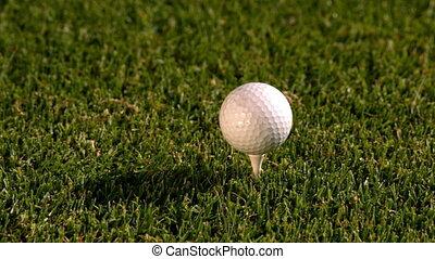 balle, club, tee, golf, fermé, frapper
