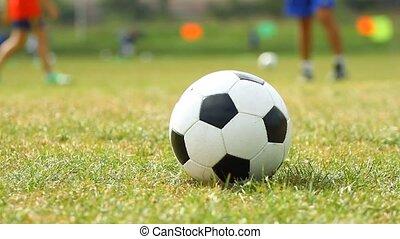 balle, herbe, football