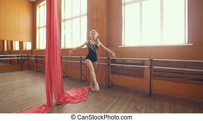 ballerine, séance entraînement, studio, jeune, gracieux
