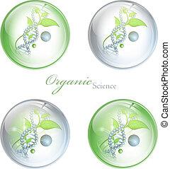 balles, organique, lustré, science