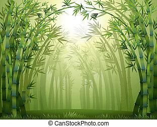 bambou, intérieur, arbres, forêt