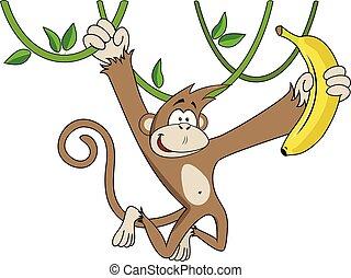 banana., rigolote, singe