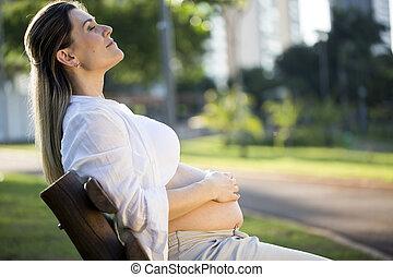 banc, pregnant, parc, coucher soleil, séance