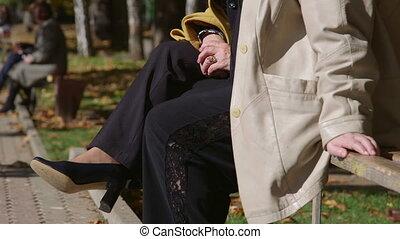 bancs, gens, ensoleillé, décontracté, séance, parc, ruelle, automne, long, jour