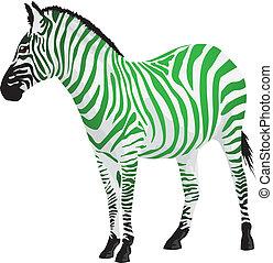 bandes, vert, zebra, color.