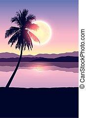 bannière, paysage, exotique, arbres, paume, lune, entiers, vacances, nuit