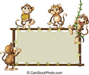 bannière, singes, vide