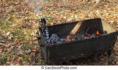 barbecue, viande