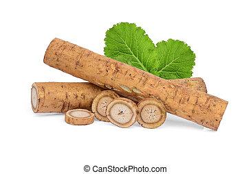 bardane, feuilles, isolé, kobo, arrière-plan vert, blanc, ou, racines