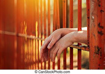 barres, yard, mains, derrière, femme, prison