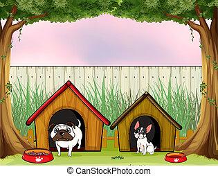 barrière, bois, intérieur, deux, maisons, animaux familiers