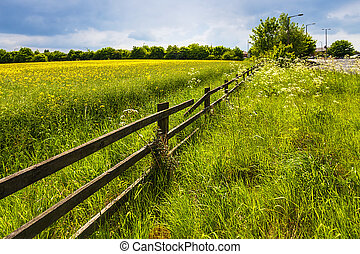 barrière, champ vert