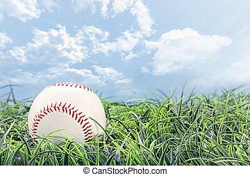 base-ball, herbe