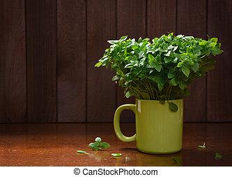 basilic, frais, vert